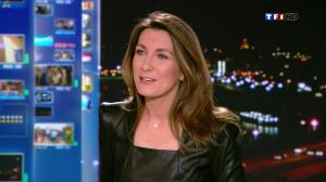 Anne Claire Coudray au 20h - 30/12/12 - 25