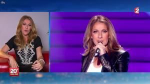 Céline Dion au JT de 20h - 24/11/12 - 01