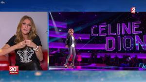 Céline Dion au JT de 20h - 24/11/12 - 03