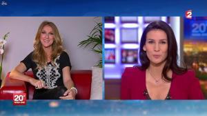 Céline Dion au JT de 20h - 24/11/12 - 06