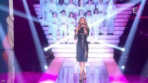 Céline Dion dans Simplement pour un Soir - 12/01/13 - 01