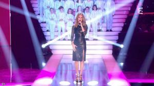 Céline Dion dans Simplement pour un Soir - 12/01/13 - 05