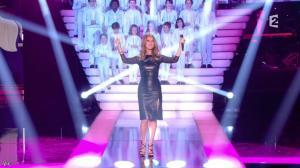 Céline Dion dans Simplement pour un Soir - 12/01/13 - 07