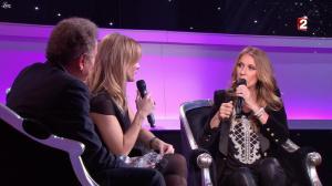 Céline Dion et Véronic Dicaire dans le Grand Show vu des Coulisses - 04/01/13 - 021