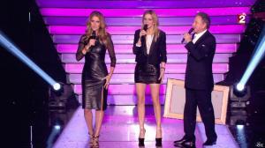Céline Dion et Véronic Dicaire dans le Grand Show vu des Coulisses - 04/01/13 - 101