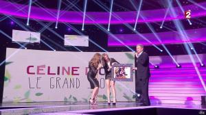 Céline Dion et Véronic Dicaire dans le Grand Show vu des Coulisses - 04/01/13 - 103