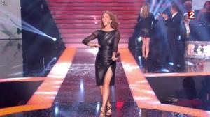 Céline Dion et Véronic Dicaire dans le Grand Show vu des Coulisses - 04/01/13 - 108