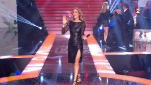 Céline Dion et Véronic Dicaire dans le Grand Show vu des Coulisses - 04/01/13 - 109