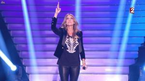 Céline Dion dans le Grand Show vu des Coulisses - 04/01/13 - 001