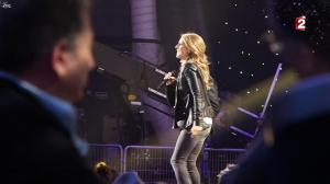 Céline Dion dans le Grand Show vu des Coulisses - 04/01/13 - 004