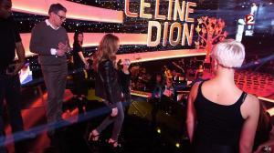 Céline Dion dans le Grand Show vu des Coulisses - 04/01/13 - 007