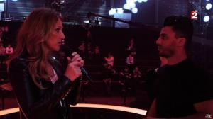 Céline Dion dans le Grand Show vu des Coulisses - 04/01/13 - 009