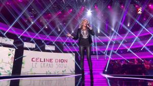 Céline Dion dans le Grand Show vu des Coulisses - 04/01/13 - 014