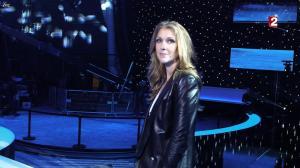 Céline Dion dans le Grand Show vu des Coulisses - 04/01/13 - 022