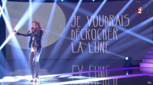 Céline Dion dans le Grand Show vu des Coulisses - 04/01/13 - 026