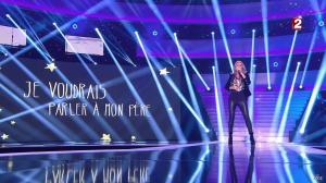 Céline Dion dans le Grand Show vu des Coulisses - 04/01/13 - 027