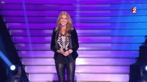 Céline Dion dans le Grand Show vu des Coulisses - 04/01/13 - 029
