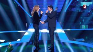 Céline Dion dans le Grand Show vu des Coulisses - 04/01/13 - 034