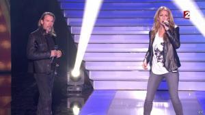 Céline Dion dans le Grand Show vu des Coulisses - 04/01/13 - 059