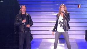 Céline Dion dans le Grand Show vu des Coulisses - 04/01/13 - 061