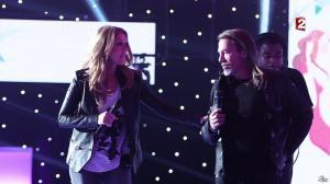Céline Dion dans le Grand Show vu des Coulisses - 04/01/13 - 065