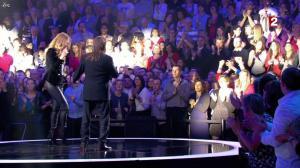 Céline Dion dans le Grand Show vu des Coulisses - 04/01/13 - 067