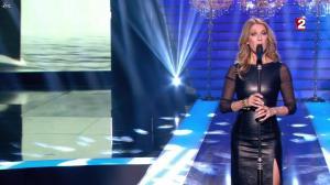 Céline Dion dans le Grand Show vu des Coulisses - 04/01/13 - 072