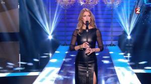 Céline Dion dans le Grand Show vu des Coulisses - 04/01/13 - 073