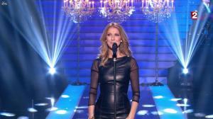 Céline Dion dans le Grand Show vu des Coulisses - 04/01/13 - 078
