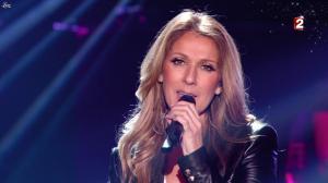 Céline Dion dans le Grand Show vu des Coulisses - 04/01/13 - 082