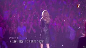 Céline Dion dans le Grand Show vu des Coulisses - 04/01/13 - 099