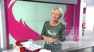 Sophie Davant dans C est au Programme - 21/11/12 - 006