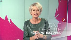 Sophie Davant dans C est au Programme - 21/11/12 - 007