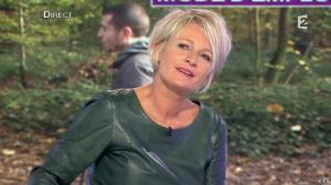 Sophie Davant dans C est au Programme - 21/11/12 - 147