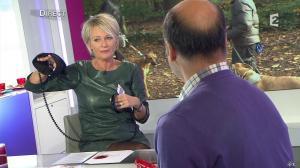 Sophie Davant dans C est au Programme - 21/11/12 - 156