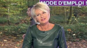 Sophie Davant dans C est au Programme - 21/11/12 - 172