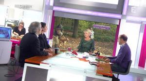 Sophie Davant dans C est au Programme - 21/11/12 - 173