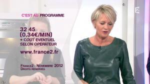 Sophie Davant dans c'est au Programme - 21/11/12 - 203