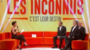 Alessandra Sublet dans les Inconnus c'est leur Destin - 28/12/13 - 01