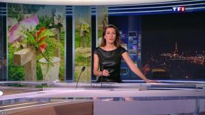 Anne Claire Coudray au JT de 20h - 22/12/13 - 06