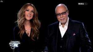 Céline Dion dans l'Incroyable Anniversaire de Line - 28/12/13 - 01