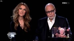 Céline Dion dans l'Incroyable Anniversaire de Line - 28/12/13 - 02