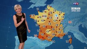 Evelyne Dhéliat à la Météo de 20h - 07/01/14 - 02
