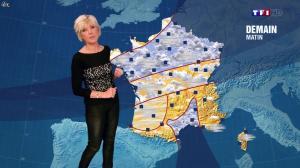 Evelyne Dhéliat à la Météo de 20h - 09/01/14 - 02