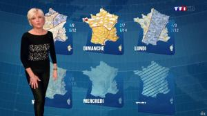 Evelyne Dhéliat à la Météo de 20h - 09/01/14 - 03