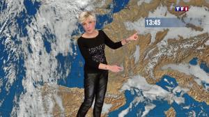 Evelyne Dhéliat à la Météo de 20h - 12/12/13 - 01