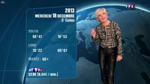 Evelyne Dhéliat à la Météo de 20h - 17/12/13 - 04
