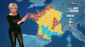 Evelyne Dhéliat à la Météo de 20h - 23/12/13 - 01