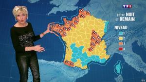 Evelyne Dhéliat à la Météo de 20h - 23/12/13 - 02