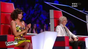 Jenifer Bartoli dans The Voice - 13/04/13 - 08